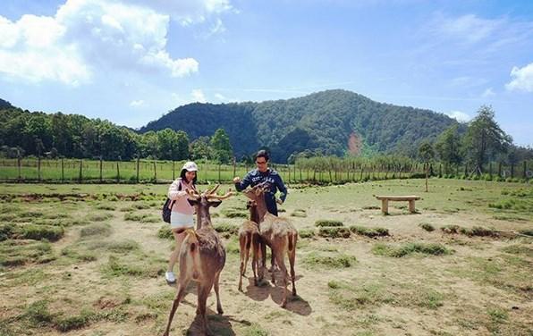 Paket Wisata Tour Bandung 3 Hari 2 Malam